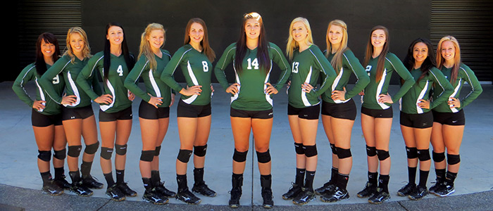 2014 Volleyball Team